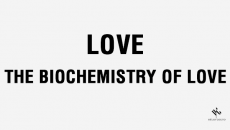 Love - The Biochemistry of love